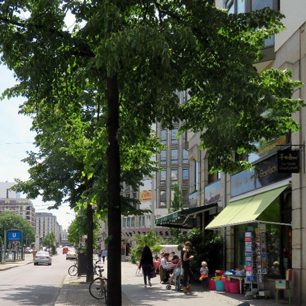 Die kleine Gesellschaft in der Friedrichstraße, Tram und U-Bahn vor der Tür